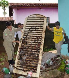 Ação Goiás contra Aedes1