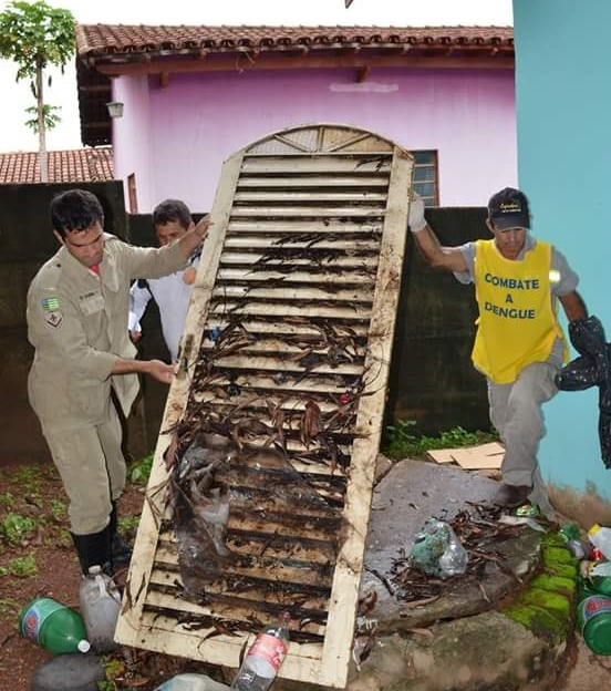 Trinta municípios de Goiás são Aedes Zero