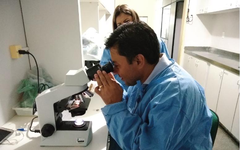Laboratório da Sesa é reconhecido em estudo de vetores e doenças