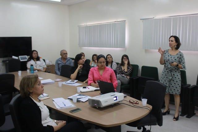 SES e Conass realizam oficina para reestruturação da rede hospitalar de gestão estadual